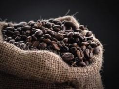 Café en grain : comment choisir ?